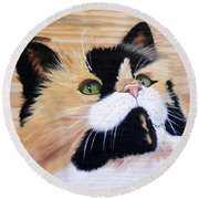 Calico Cat On Wood Round Beach Towel