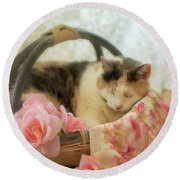 Calico Kitty In A Basket With Pink Roses Round Beach Towel