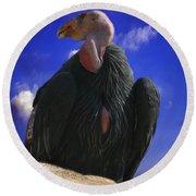 California Condor Round Beach Towel