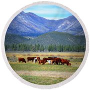 Round Beach Towel featuring the photograph California Pastures by Glenn McCarthy Art and Photography
