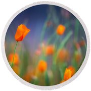 California Poppies 2 Round Beach Towel