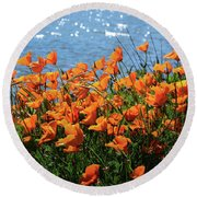 California Poppies By Richardson Bay Round Beach Towel