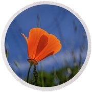 California Poppy Round Beach Towel by Marc Crumpler