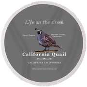 California Quail - Color Bird - White Text Round Beach Towel