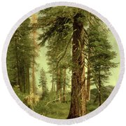 California Redwoods Round Beach Towel