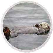 California Sea Otter Round Beach Towel by Art Block Collections