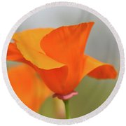 California State Poppy Macro Round Beach Towel