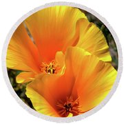 Round Beach Towel featuring the photograph Californian Poppy by Baggieoldboy