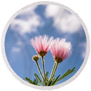 Calliandra Flowers Round Beach Towel by Lana Enderle