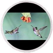 Calliope Hummingbirds Round Beach Towel