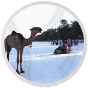 Camel On Beach Kenya Wedding 5 Round Beach Towel