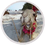 Camel On Beach Kenya Wedding2 Round Beach Towel
