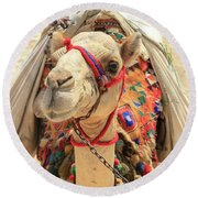 Round Beach Towel featuring the photograph Camel by Silvia Bruno