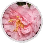 Round Beach Towel featuring the photograph Camellia by Ann Jacobson