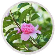 Camellia Ballet Queen Round Beach Towel