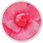 Camellia Soft Round Beach Towel by Denis Lemay