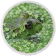 Camo Frog Round Beach Towel by Ronda Ryan