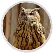 Round Beach Towel featuring the photograph Camouflage Eagle Owl by Debby Pueschel
