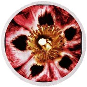 Round Beach Towel featuring the photograph Can You Guess What Flower? Hints: It's by Mr Photojimsf