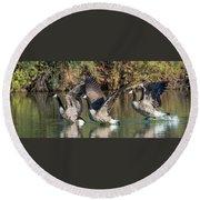 Canada Geese 5659-092217-1cr-p Round Beach Towel