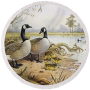Canada Geese Round Beach Towel by Carl Donner