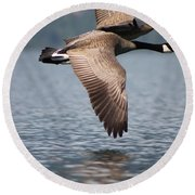 Canada's Goose Round Beach Towel by Cathie Douglas