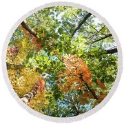 Canadian Foliage Round Beach Towel