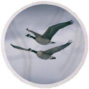 Canadian Geese In Flight Round Beach Towel