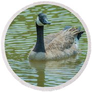 Canadian Goose Img 1 Round Beach Towel