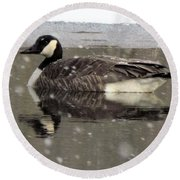 Canadian Goose In Michigan Round Beach Towel