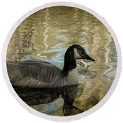 Canadian Goose Round Beach Towel by Steven Richardson