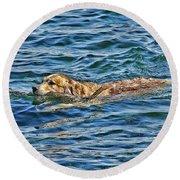 Canine Joie De Vivre Round Beach Towel