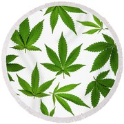 Cannabis Round Beach Towel by Tim Gainey