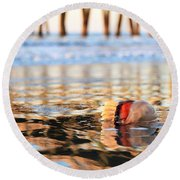 Cannonball Jellyfish Beached Round Beach Towel