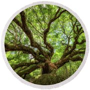Canopy Of Color At Angel Oak Tree  Round Beach Towel by Michael Ver Sprill