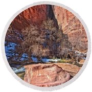 Round Beach Towel featuring the photograph Canyon Corner by Christopher Holmes