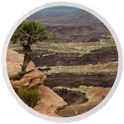Round Beach Towel featuring the photograph Canyonlands by Gary Lengyel