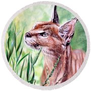Caracal Round Beach Towel