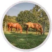 1006 - Caramel Horses I Round Beach Towel
