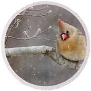 Cardinal And Falling Snow Round Beach Towel