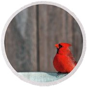Cardinal Drinking Round Beach Towel