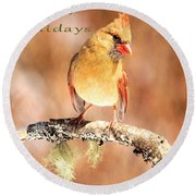 Round Beach Towel featuring the photograph Cardinal Happy Holidays by Debbie Stahre