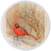 Cardinal In Fall  Round Beach Towel