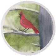 Cardinal In My Pine Tree Round Beach Towel