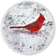 Cardinal In The Snow Round Beach Towel by Suzanne Stout