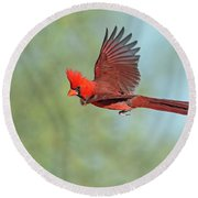 Cardinal On A Mission Round Beach Towel