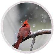 Cardinal Snowfall Round Beach Towel