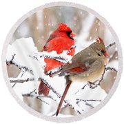 Cardinals In The Winter Round Beach Towel