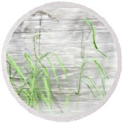 Carex At The Shed Round Beach Towel
