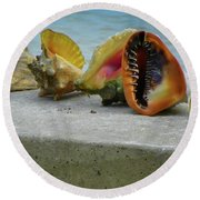 Round Beach Towel featuring the photograph Caribbean Charisma by Karen Wiles